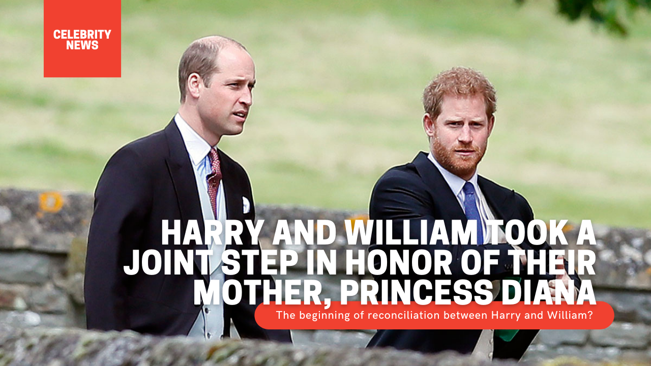 Harry and William took a joint step in honor of their mother, Princess Diana