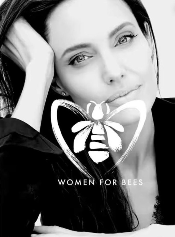Angelina Jolie poses with bees on herself for World Bee Day