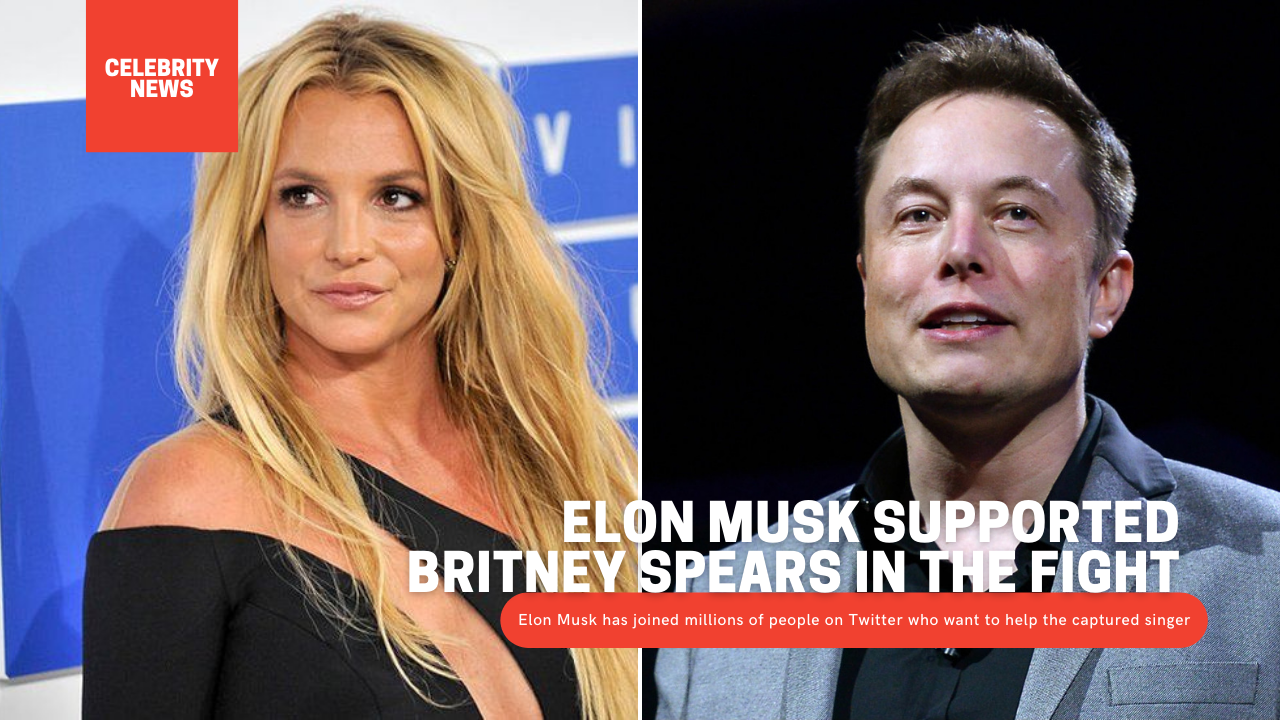 Elon Musk supported Britney Spears in the fight